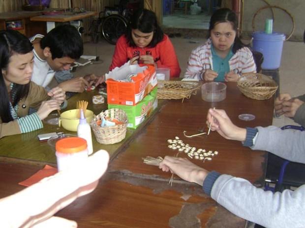 挪威提供财务资助 协助越南残疾人更好地融入社会 hinh anh 1