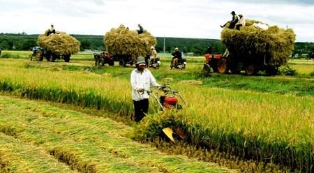 越南主动融入全球经济 hinh anh 1