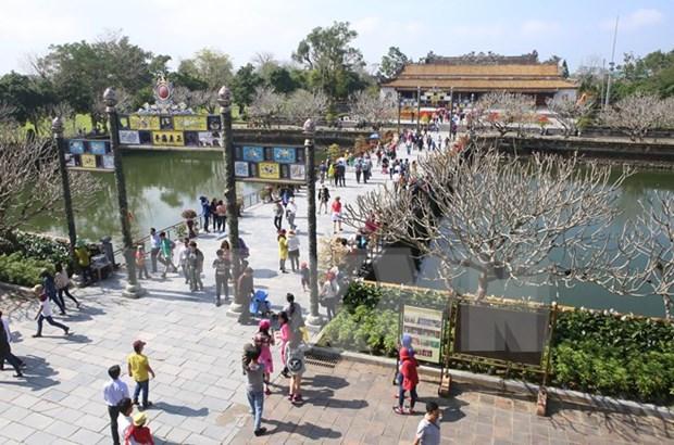 越南旅行社向游客出售数千条暑期廉价旅游线路 hinh anh 1