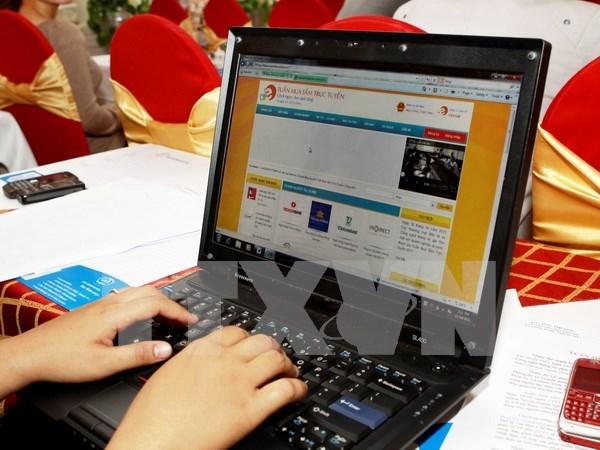 2015年越南电子商务营业额达40多亿美元 hinh anh 1