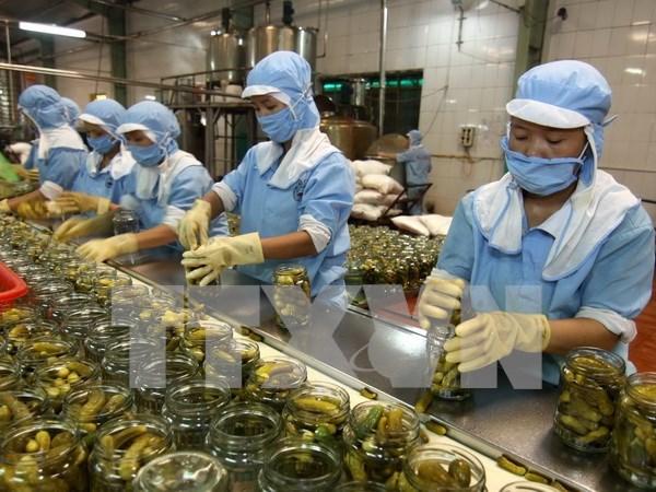 越南企业组团赴新西兰参观考察寻找商机 hinh anh 1