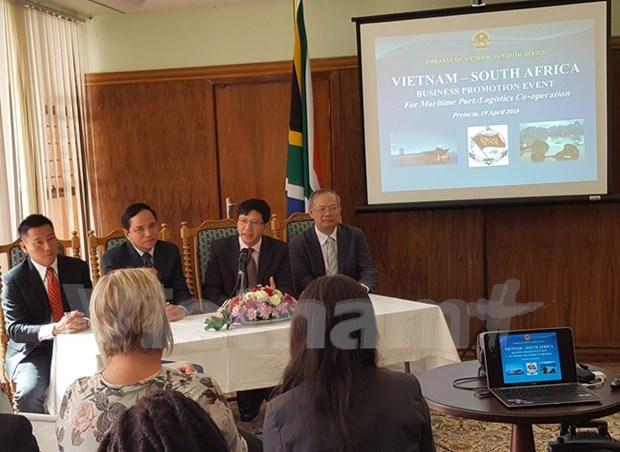 越南与南非促进海运领域合作 hinh anh 1