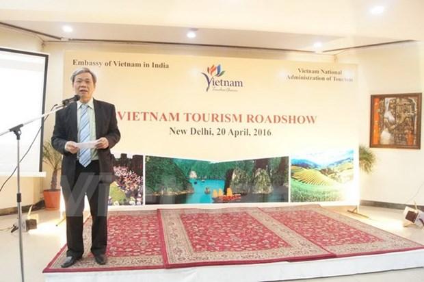 越南旅游推介活动在印度举行 hinh anh 1