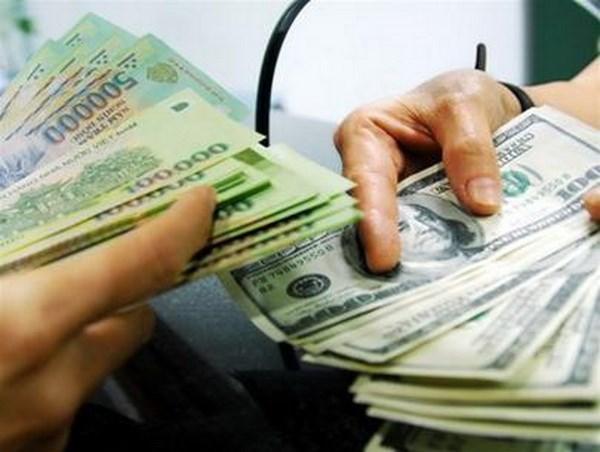 越南国家银行越盾兑美元中心汇率较前一日上涨5越盾 hinh anh 1