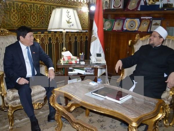越南政府宗教委员会代表团对埃及进行工作访问 hinh anh 1