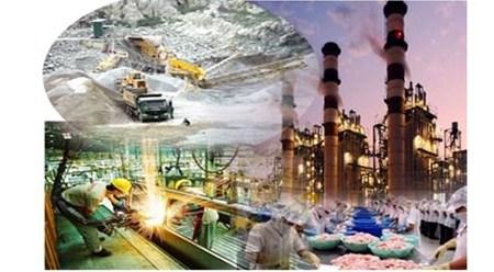 在融入国际经济时代越南促进工业发展 hinh anh 1