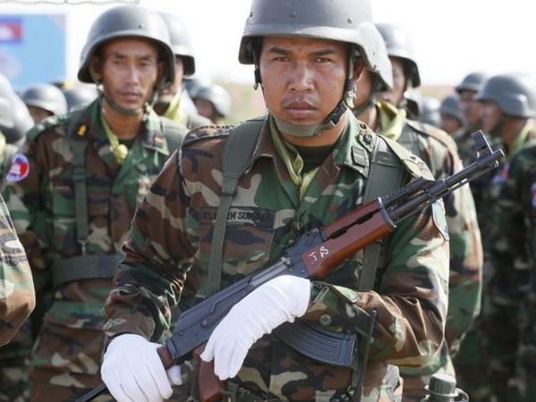 柬埔寨派出200多名官兵执行联合国维和行动 hinh anh 1