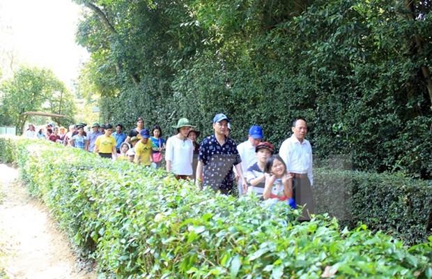 4·30和5·1假期宜安省胡伯伯故乡吸引游客量猛增 hinh anh 1