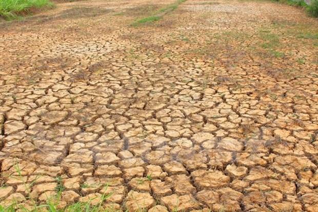 应对气候变化支持项目获批 hinh anh 1