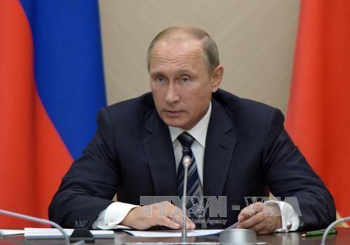俄罗斯批准《越南与欧亚经济联盟自由贸易协定》 hinh anh 1