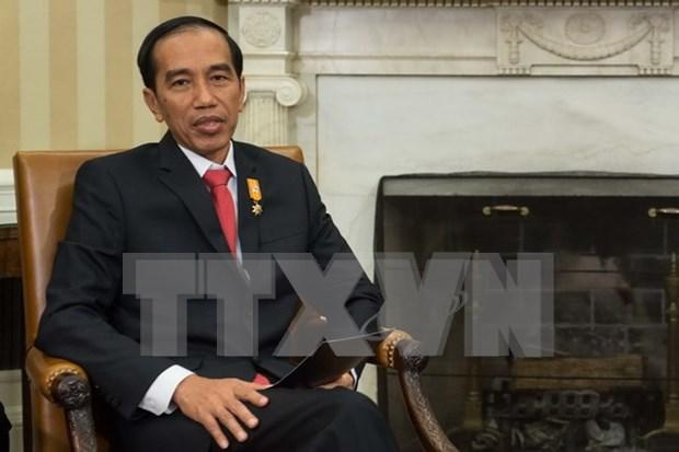 印尼将举行地区对话 共商航行安全 hinh anh 1