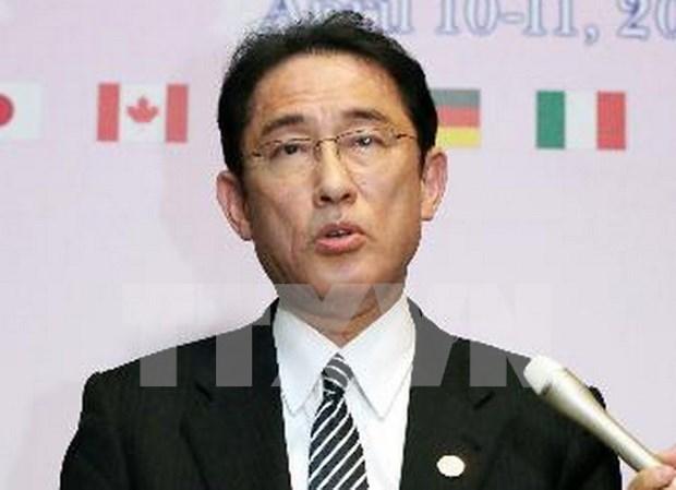 日本外相岸田文雄宣称支持东盟经济共同体 hinh anh 1