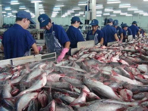 今年前四个月越南水产品出口额达近20亿美元 hinh anh 1