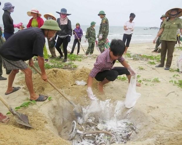 阮春福总理关于中部一些省份海产品异常死亡事件的指导性意见 hinh anh 1