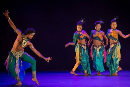 文化体育与旅游部:多个国际艺术团将赴越演出 hinh anh 1