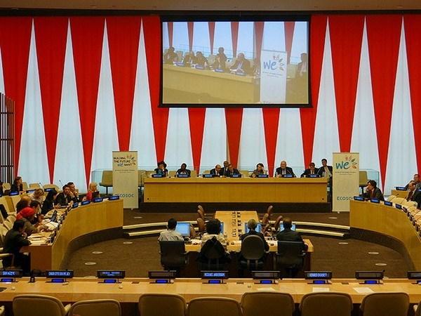 越南出席联合国经社理事会政策对话 hinh anh 1
