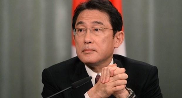老挝与日本就通过和平措施解决东海争端达成共识 hinh anh 1