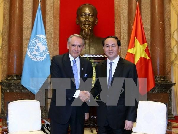 越南国家主席陈大光:越南积极参与联合国工作 hinh anh 1