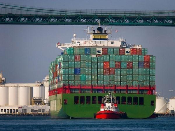 越南航海局对各船主和船舶开发公司发布海盗警告 hinh anh 1