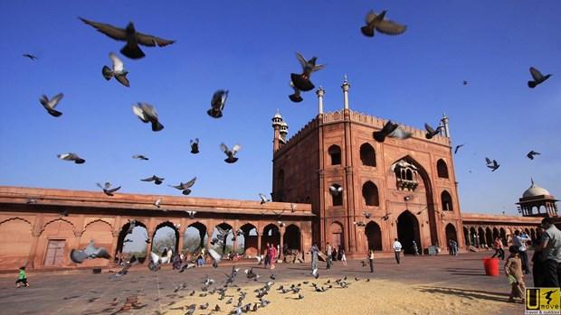 印度推出旅游推广计划 拟吸引来自东南亚国家的大量游客 hinh anh 1