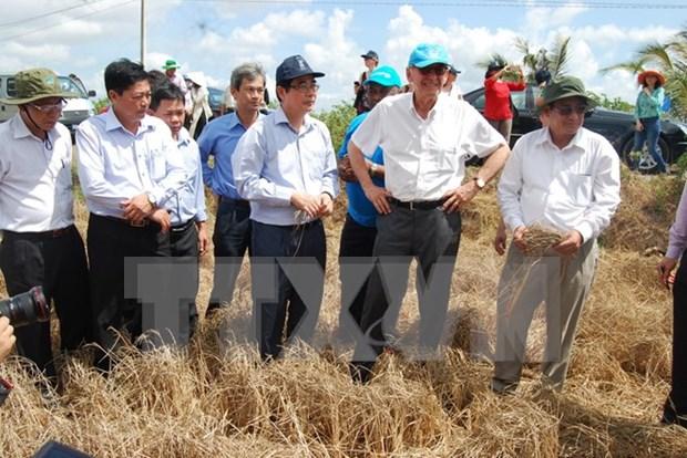 联合国常务副秘书长对越南槟椥省遭受干旱及海水入侵现象造成损失进行实地考察 hinh anh 1