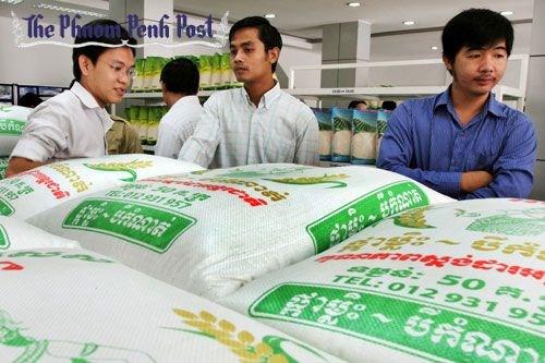 第一季度柬埔寨吸引外资逾4亿美元 hinh anh 1