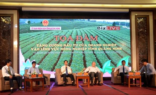 越南广宁省吸引对农业领域的投资 hinh anh 1