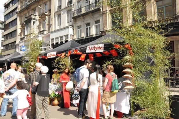 越南参加比利时布鲁塞尔多元文化日活动 hinh anh 1