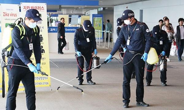 越卫生部继续公布有关从越南返回韩国的韩公民被确诊感染寨卡病毒的信息 hinh anh 1