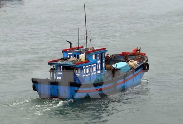 马来西亚海域遇险的4名外国公民被越南渔民安全救起 hinh anh 1