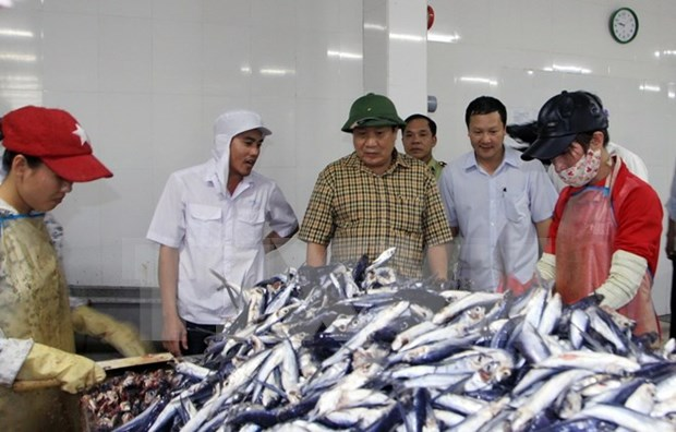 越南政府总理及时指导援助受大批鱼群异常死亡事件影响民众 hinh anh 1