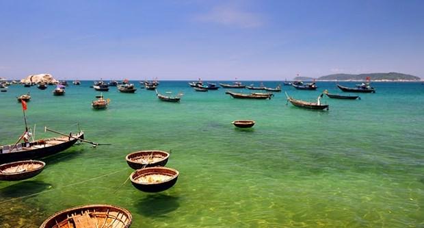 广南省占婆岛开设海底漫步旅游让游客探索海底世界 hinh anh 1