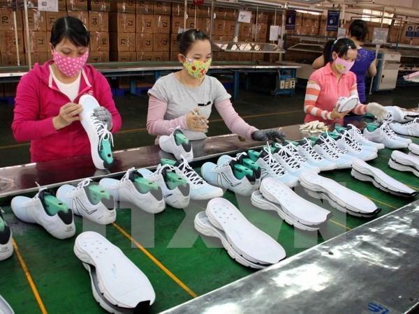 同塔省政府努力打造省级竞争力指数排行榜亚军品牌 hinh anh 2