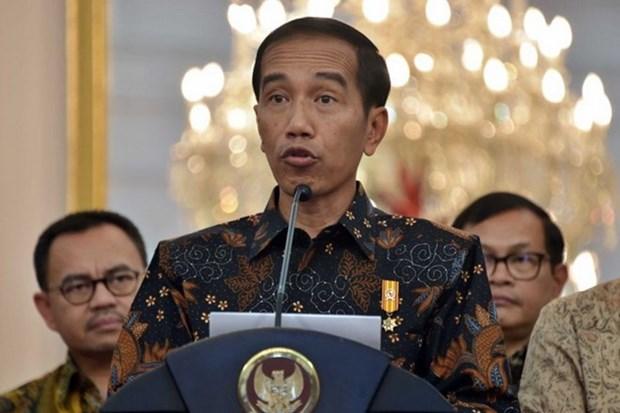 印尼总统佐科·维多多:俄罗斯是印尼与东盟的战略伙伴 hinh anh 1