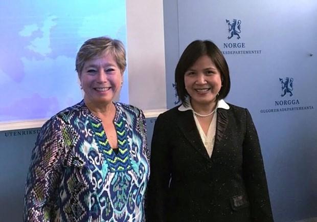 越南-挪威合作与机遇 hinh anh 1