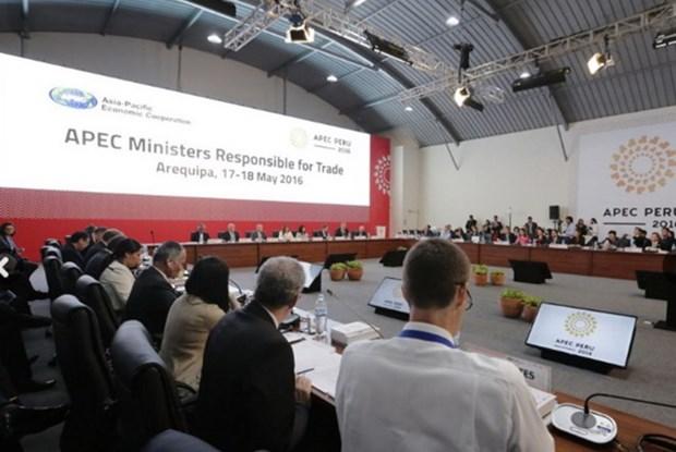 亚太经合组织贸易部长会议在秘鲁开幕 hinh anh 1