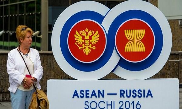 索契俄罗斯东盟峰会是双边全面战略伙伴关系发展的引擎 hinh anh 1