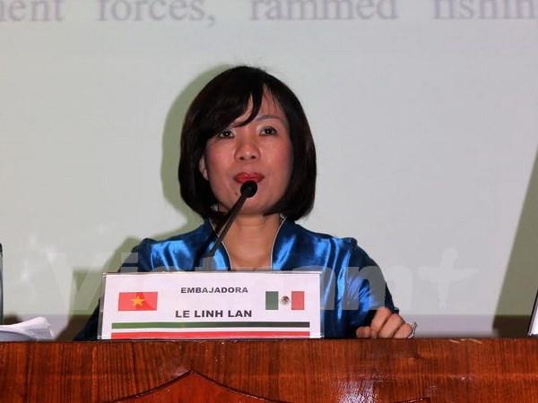 越南驻墨西哥大使谈地区安全和东海争端 hinh anh 1