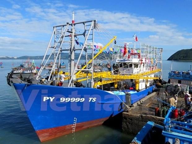 越南渔业工会反对中国在东海实施休渔 hinh anh 1
