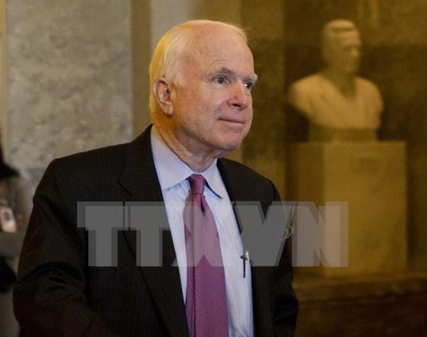 美国参议员约翰·麦凯恩相信美越关系将蓬勃发展 hinh anh 1