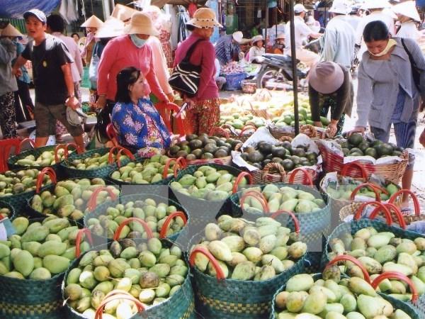 越南同塔省农民向国外出口农产品 hinh anh 1