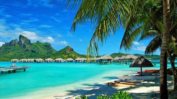 70%以上的国际游客选择到越南沿海地区旅游 hinh anh 1