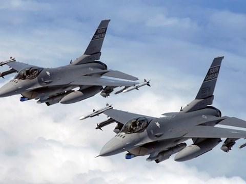 美政界与退伍军人大力支持奥巴马总统撤销对越南武器禁运令 hinh anh 1