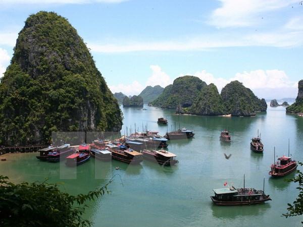 越南旅游市场活跃发展 hinh anh 1
