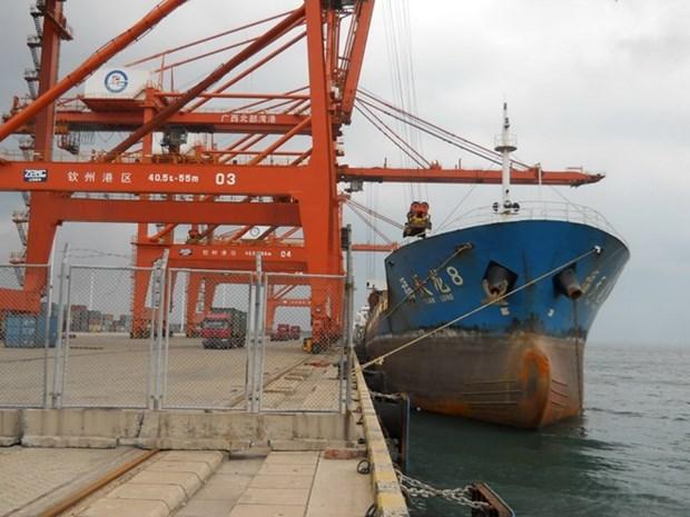 东盟-中国港口物流信息中心启用 hinh anh 1