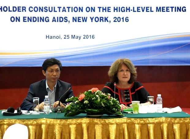 越南将出席在美国举行的艾滋病高级别会议 hinh anh 1