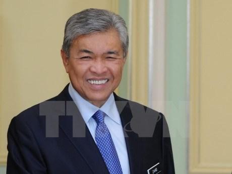 马来西亚副总理阿末扎希德访问日本 hinh anh 1