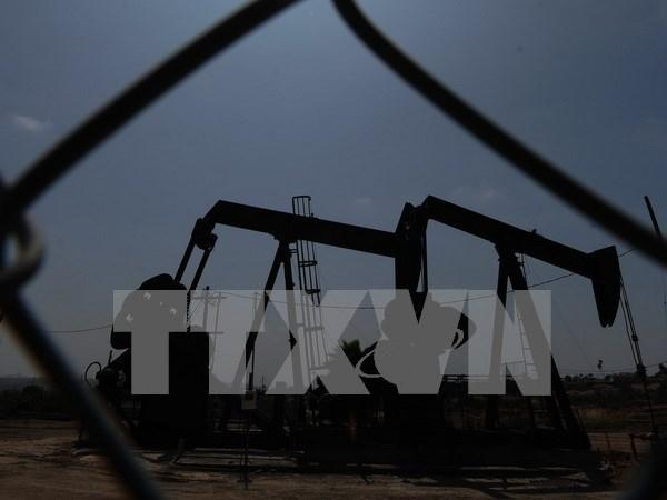 印尼将从伊朗进口大量液化石油气 hinh anh 1