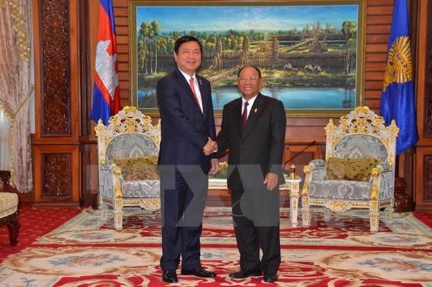 柬埔寨国会与政府领导人会见胡志明市市委书记丁罗升 hinh anh 1