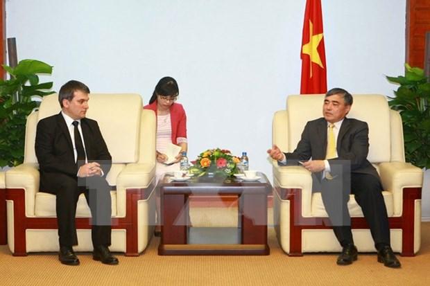 土耳其阿纳多卢通讯社与越南加强媒体信息领域合作 hinh anh 1